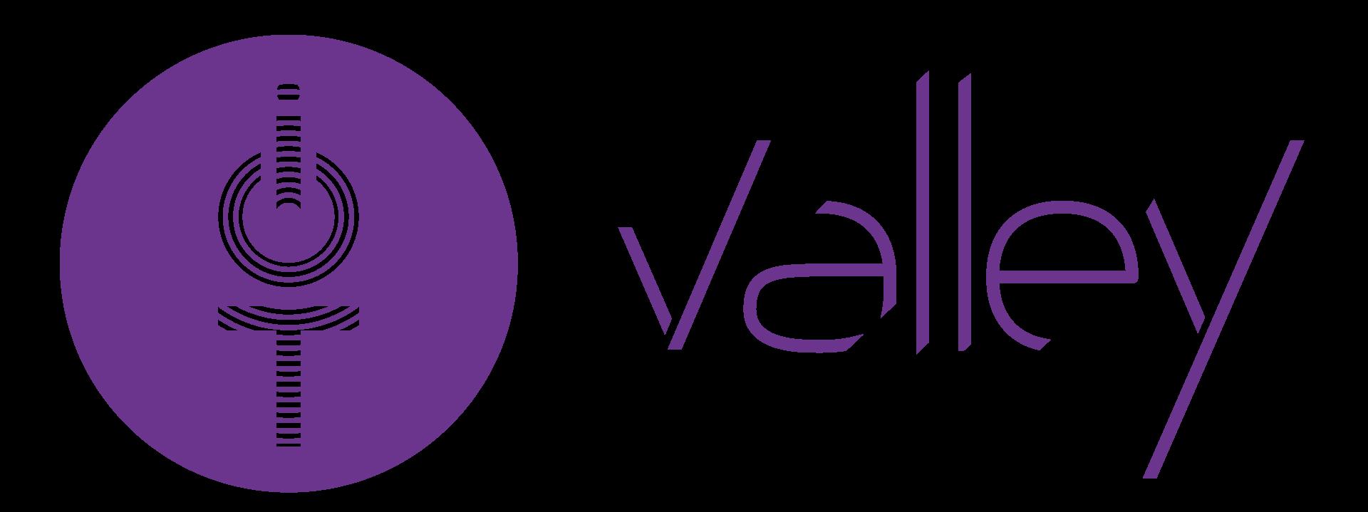 logo_iotvalley_violet